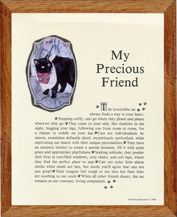 personalized cat picture frames definition of my